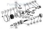 Jabsco_10550_series_parts