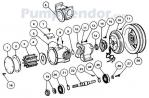 Jabsco_50270_series_parts